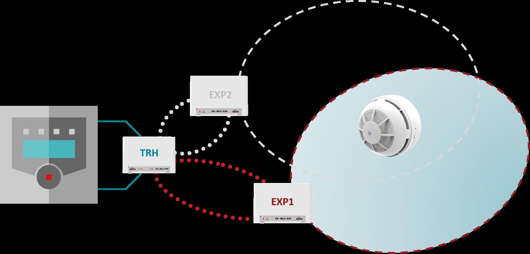 Expander Network 1